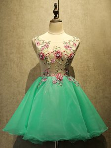 Apple Green Organza Lace Up Pageant Dress for Girls Sleeveless Mini Length Appliques