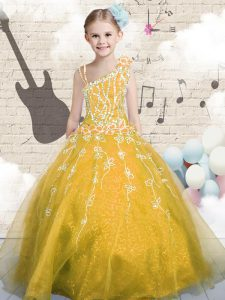 Cheap Orange Ball Gowns Appliques Winning Pageant Gowns Lace Up Tulle Sleeveless Floor Length