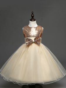 Superior Scoop Sleeveless Zipper Flower Girl Dress Champagne Tulle