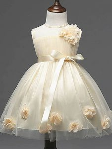 Latest Ball Gowns Pageant Dress Womens Champagne Scoop Tulle Sleeveless Knee Length Zipper