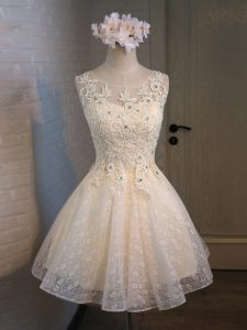 Champagne Lace Up Scoop Lace and Appliques and Belt Evening Gowns Organza and Lace Sleeveless