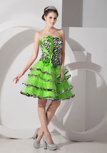 Sexy Zebra A-line Pageant Dress Patterns with Ruffled Layers in Spring Green