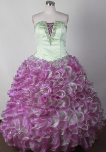 Colorful Stunning Appliqued Little Girl Pageant Dress with Ruffles in Organza