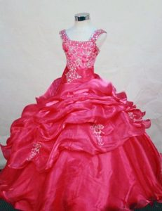 Best Seller Appliqued Hot Pink Zipper-up Organza Dresses for Pageants in NJ