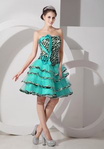Beautiful Zebra A-line Strapless 2014 Pageant Dress for Miss America with Layers