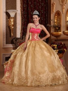 Gold Ruffled Ball Gown Organza Embroidery Pageant Dress for Miss USA