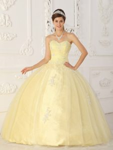 Popular Light Yellow Sweetheart Organza Long Pageant Dress for Miss World