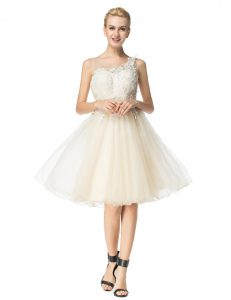 Fashion Champagne Pageant Dress Prom and Party with Beading Scoop Sleeveless Zipper