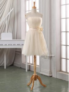Stylish Strapless Sleeveless Zipper Custom Made Pageant Dress White and Champagne Tulle