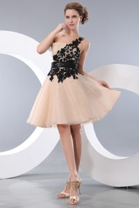 Champagne A-line One Shoulder Mini Pageant Dress in Organza with Appliques