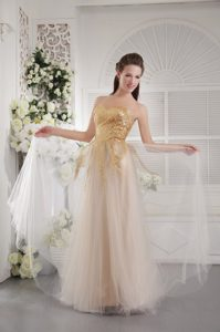 Champagne Sweetheart Dresses for Grand Dazzle Pageant USA with Tulle and Sequins
