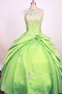Spring Green Halter Taffeta Magnificent Pageant Dresses for Miss America