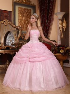 New Baby Pink Strapless Organza Pageant Dress with Appliques and Pick Ups