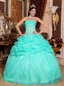 Turquoise Strapless Pageant Dresses in Organza with Appliques and Pick Ups