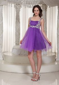Popular Purple Tulle Short Pageant Dress for Miss America with Appliques