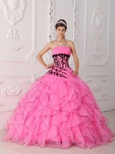 Strapless Floor-length Appliqued Pink New Pageant Dresses for Miss USA