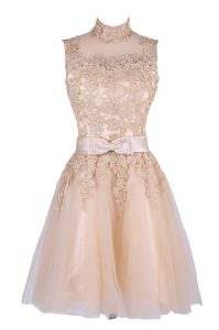 Champagne A-line Appliques Pageant Dress for Womens Zipper Tulle Sleeveless Knee Length