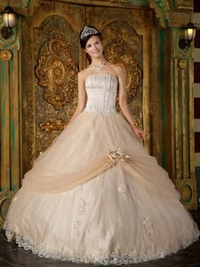 Best Champagne Ball Gown Strapless Beauty Pageant Dress with Appliques