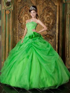 Spring Green Strapless Organza Pageant Dress with Beading for Custom Made
